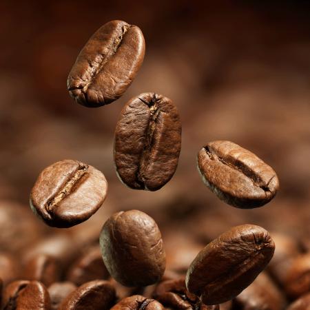 coffee beans dark roast