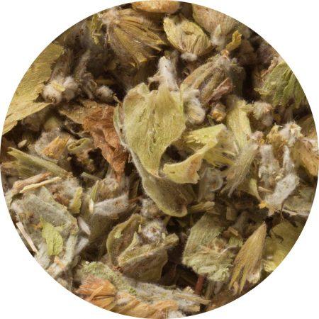 greek mountain tea organic