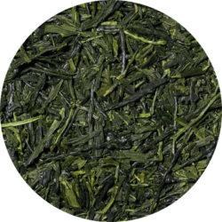 gyokuro tokiwa organic japan green tea