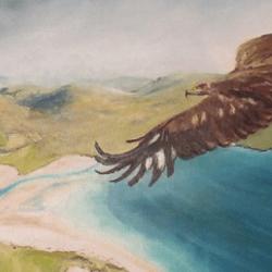 luskentyre eagle© Margaret Maclean